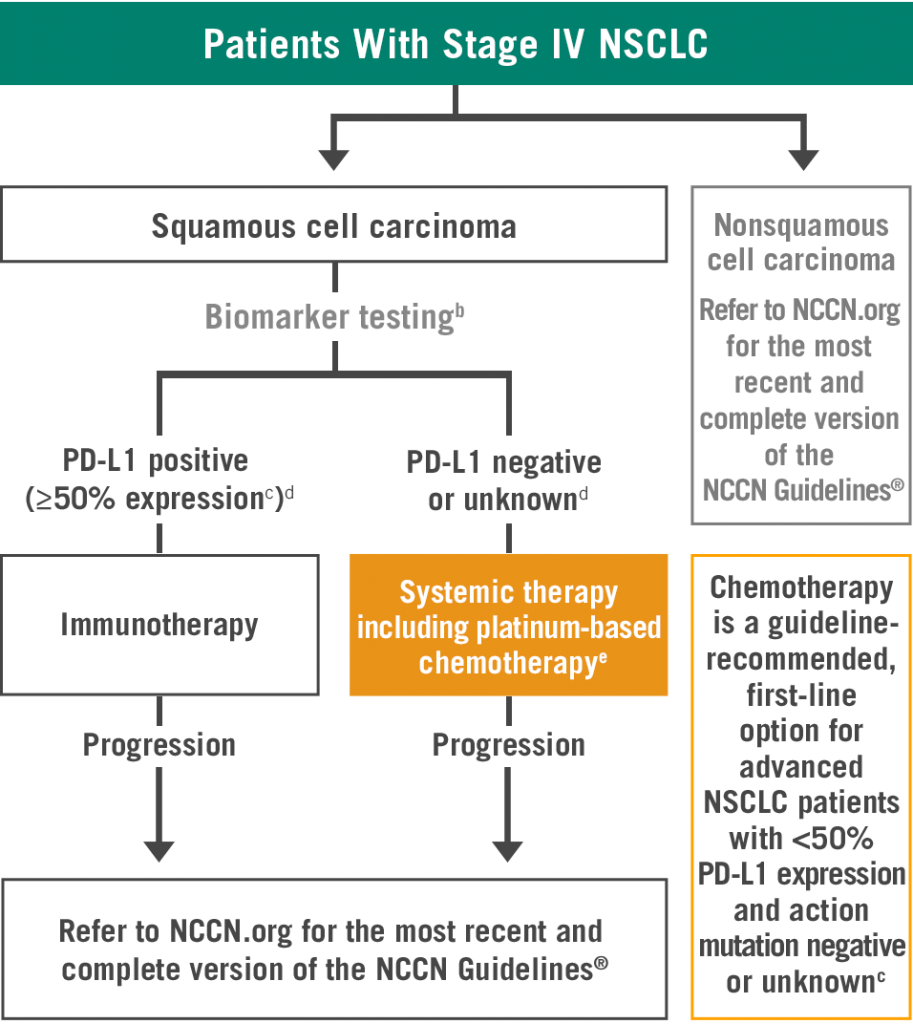 Overview of National Comprehensive Cancer Network® Guidelines for Stage IV Advanced NSCLC - chart